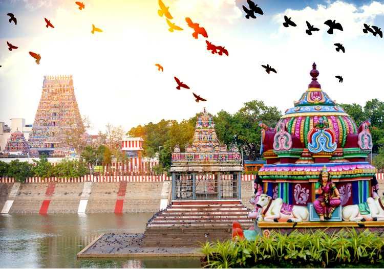 Que voir et que faire à lors d'un voyage à Chennai ?